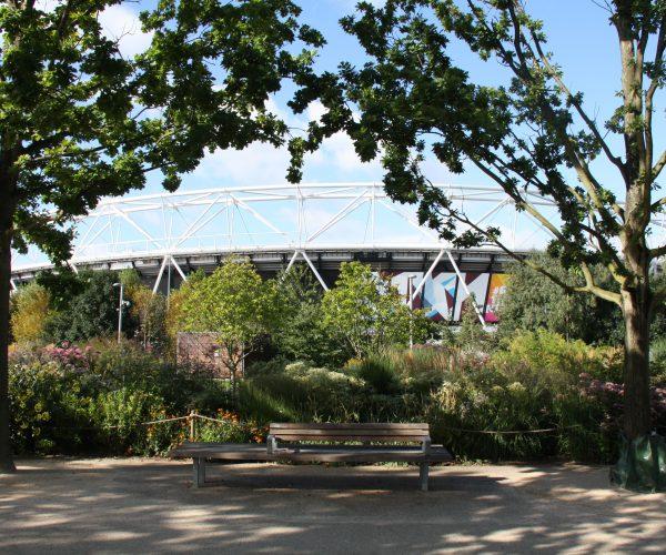 Stadiumplants