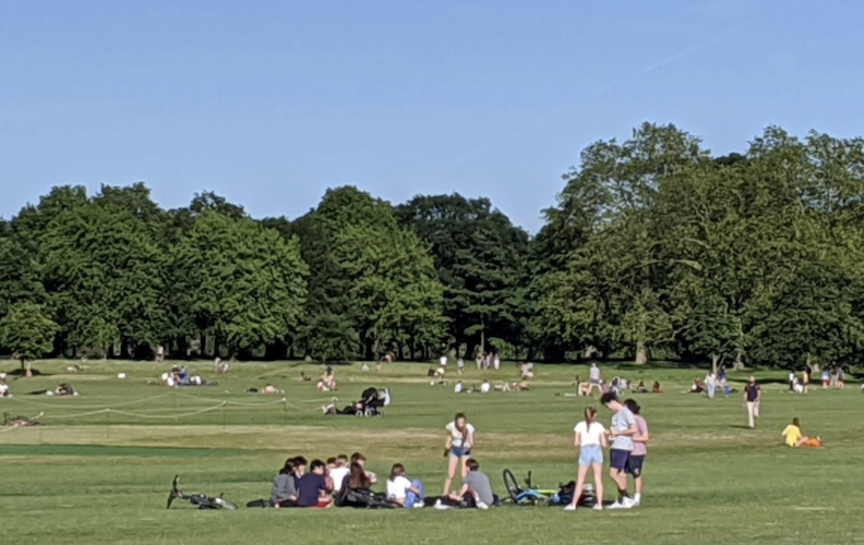 Andrew Murray: A walk to Regent's Park – time to take back control?
