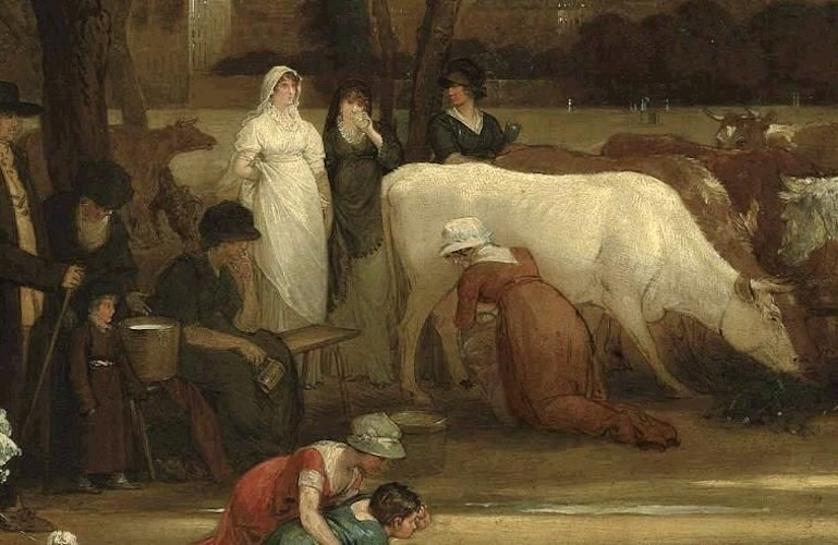 Vic Keegan's Lost London 153: The cows of St James's Park