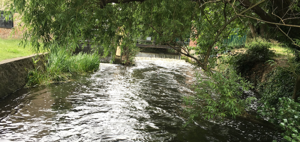 Vic Keegan's Lost London 27: the miracle of the Wandle
